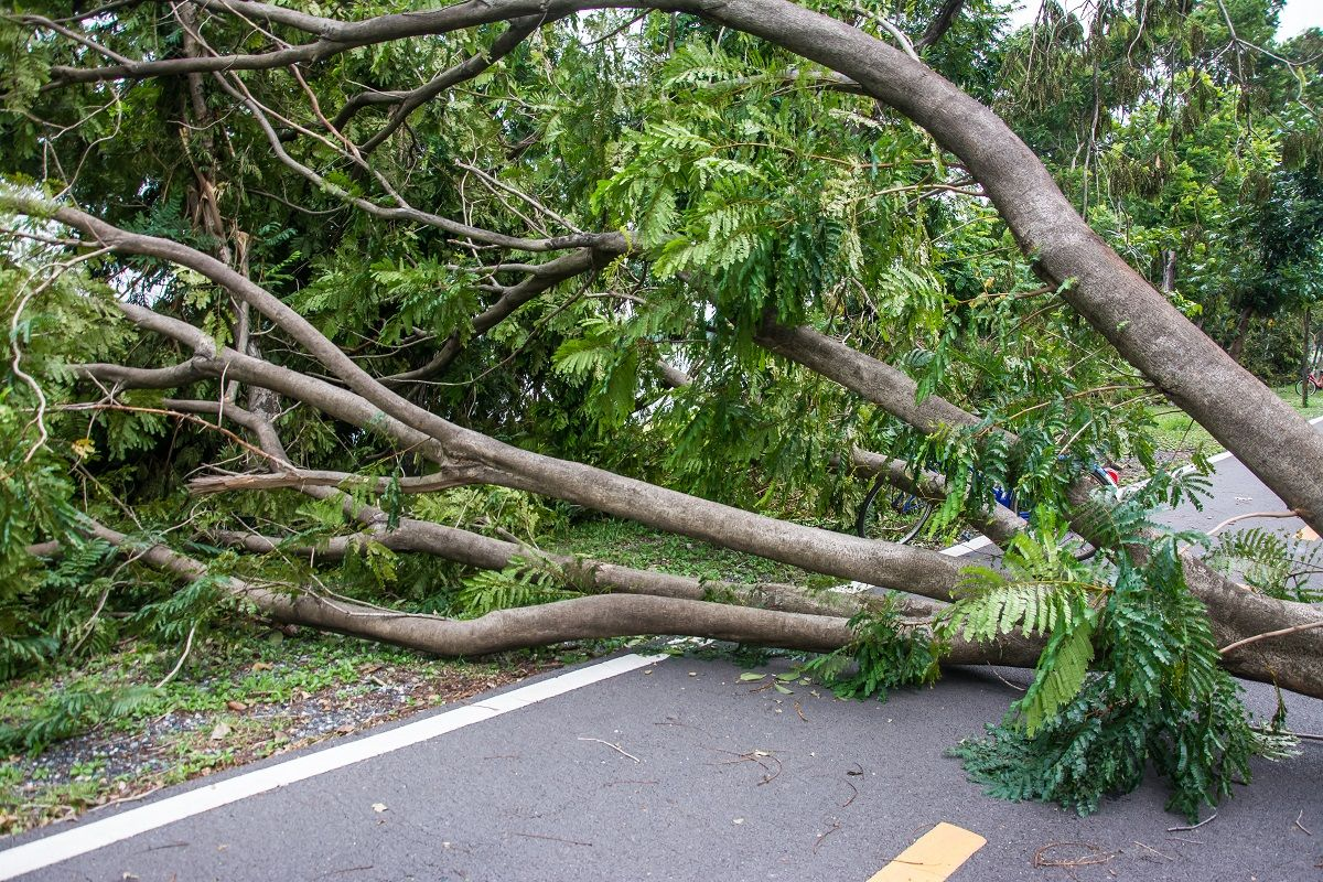 Nine Steps to Take after You Suffer from Hurricane Damage